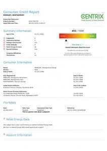 Sample Consumer Credit Report